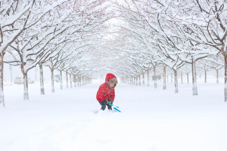Shoveling snow in Grant Park